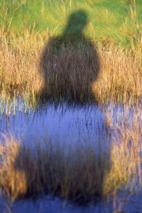 AW2-3 Shadow self portrait: saltmarsh