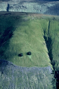 SH63 Blanket bog & felled forest, Great Glen