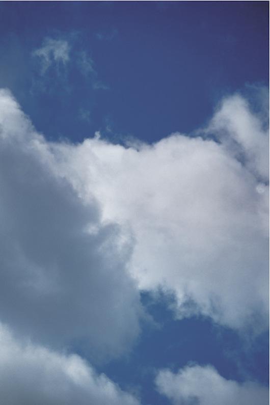 oie-p112-skycow-jpgviapdf-sws